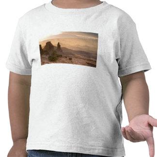 USA; Utah; Canyonlands National Park. View of Tshirt