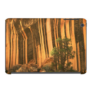 USA, Utah, Capitol Reef National Park iPad Mini Covers