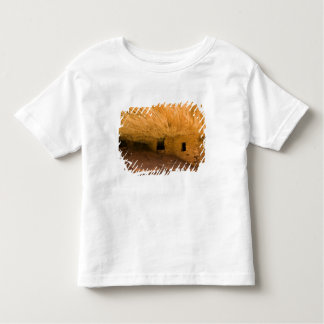 USA, Utah, Cedar Mesa, Mule Canyon. Sandstone Shirt