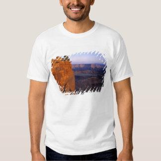 USA, Utah, Dead Horse Point SP. Late light turns Tshirt