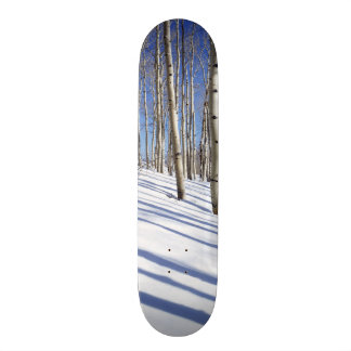USA, Utah, Dixie National Forest, Aspen Grove Skate Board Decks