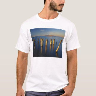 USA, Utah, Great Basin, Saltair, Great Salt T-Shirt