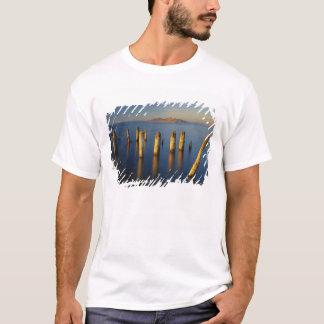 USA, Utah, Great Basin, Saltair, Great Salt T-Shirt