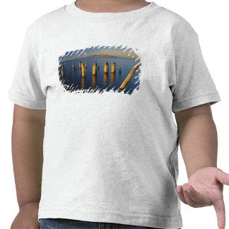 USA, Utah, Great Basin, Saltair, Great Salt T-shirts