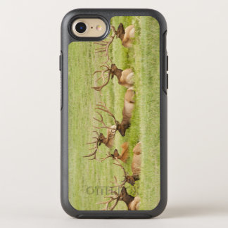 USA, Utah, Group of bull Elk (Cervus canadensis) OtterBox Symmetry iPhone 8/7 Case