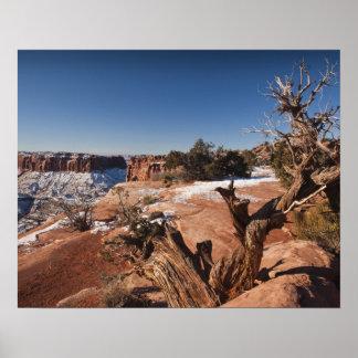USA, Utah, Moab. Canyonlands National Park, Poster