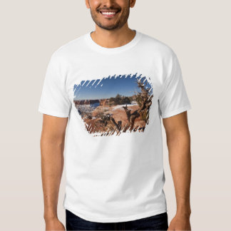 USA, Utah, Moab. Canyonlands National Park, T Shirt