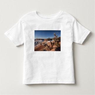USA, Utah, Moab. Canyonlands National Park, Tshirt
