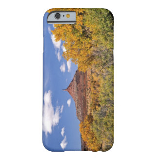 USA, Utah, near Canyonlands National Park on Barely There iPhone 6 Case