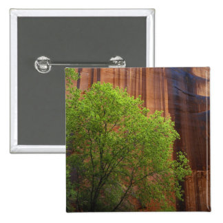 USA, Utah, Paria Canyon- Vermillion Cliffs 15 Cm Square Badge
