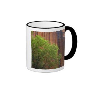 USA, Utah, Paria Canyon- Vermillion Cliffs Ringer Mug