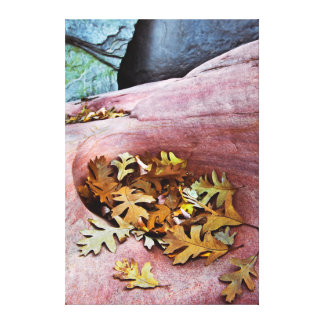 USA, Utah, Zion National Park. Gambel oak leaves Gallery Wrap Canvas