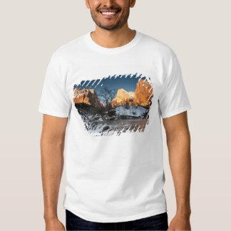 USA, Utah, Zion National Park. Mountain sunrise T Shirts