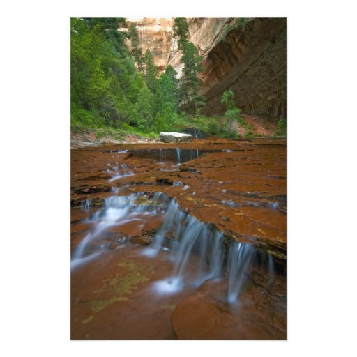 USA, Utah, Zion National Park. Scenic from 2 Art Photo
