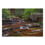 USA, Utah, Zion National Park. Scenic from 4 Photographic Print