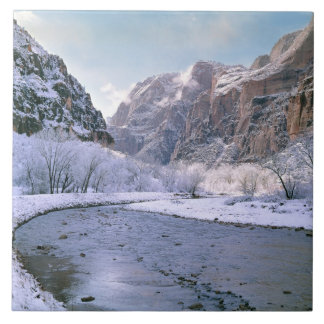 USA, Utah, Zion NP. New snow covers the canyon Ceramic Tile