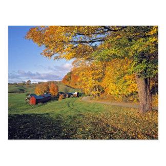 USA, Vermont, Jenne Farm. Fall comes to Jenne Postcard