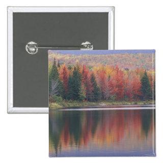 USA Vermont McAllister Lake near Hazens Notch Buttons