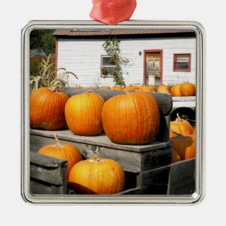 USA, Vermont. Pumpkins Silver-Colored Square Decoration