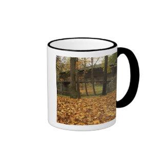 USA, Virginia, Covington, Humpback Covered Mugs