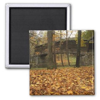 USA, Virginia, Covington, Humpback Covered Square Magnet
