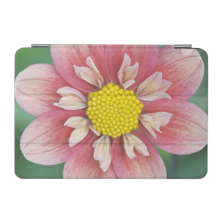 USA, Washington, Bellevue, Bellevue Botanical iPad Mini Cover