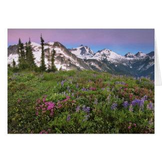USA, Washington, Cascade Mountains, North Card