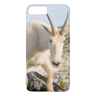 USA, Washington, Cascade Range 3 iPhone 7 Plus Case