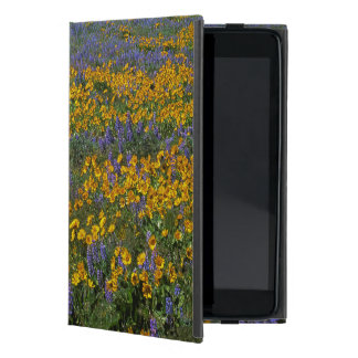 USA, Washington, Columbia River Gorge National Cover For iPad Mini