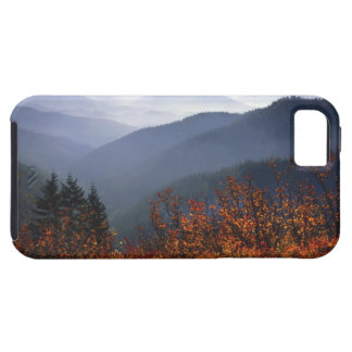 USA, Washington, Columbia River Gorge National iPhone 5 Covers