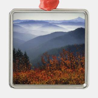 USA, Washington, Columbia River Gorge National Silver-Colored Square Decoration