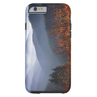 USA, Washington, Columbia River Gorge National Tough iPhone 6 Case