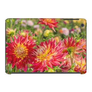 USA, Washington. Dahlia Flowers In Garden iPad Mini Case