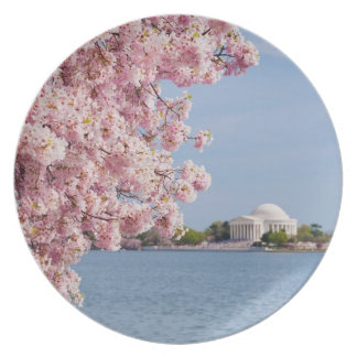 USA, Washington DC, Cherry tree Plate