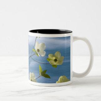 USA, Washington, Hood Canal. Pacific dogwood Two-Tone Coffee Mug