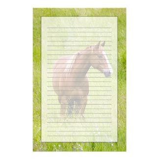 USA, Washington, Horse in Spring Field, Stationery