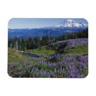 USA, Washington Mt. Adams Wilderness, Meadows Rectangular Photo Magnet