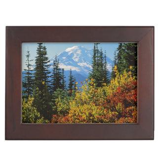 USA, Washington, Mt. Rainier National Park 2 Memory Boxes