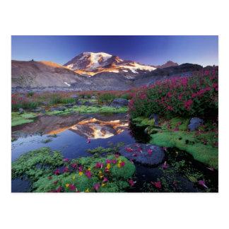 USA, Washington, Mt. Rainier NP, sunrise, Postcard