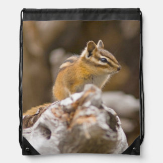 USA, Washington, North Cascades National Park 9 Drawstring Backpacks