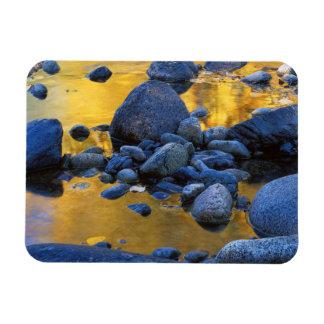 USA, Washington, Okanogan-Wenatchee National Rectangular Photo Magnet
