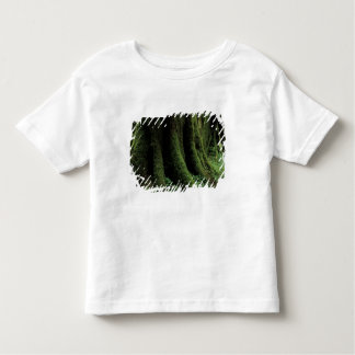 USA, Washington, Olympic National Park, 2 Toddler T-Shirt
