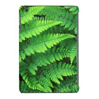 USA, Washington, Olympic National Park, Athyrium iPad Mini Covers