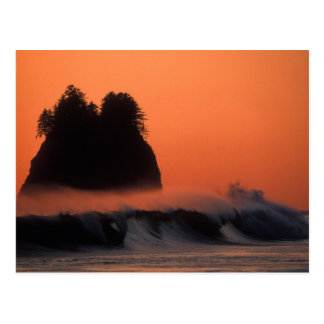 USA, Washington, Olympic National Park, Sea Postcard