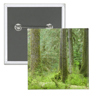 USA, Washington, Olympic National Park, Spring 3 15 Cm Square Badge