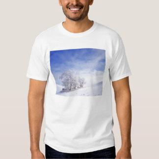 USA, Washington, Palouse Area, Frosted Black T-shirt