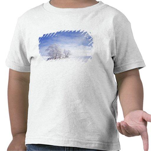 USA, Washington, Palouse Area, Frosted Black Tshirts