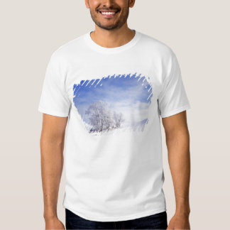 USA, Washington, Palouse Area, Frosted Black Tshirt