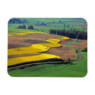 USA, Washington, Palouse, Whitman County 2 Rectangular Photo Magnet