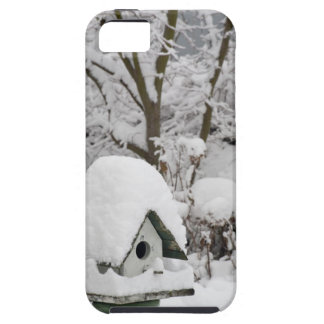 USA, Washington, Seabeck. Close-up of bird house iPhone 5 Covers